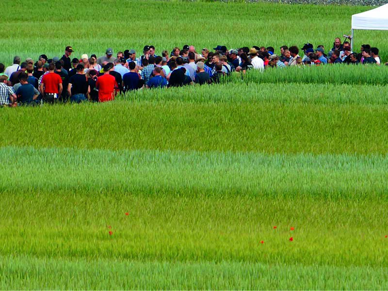 Group of people in field